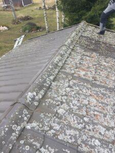katusepesu ja samblatõrje Tallinnas